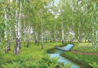 Берёзовый рай (196х280) 16 листов